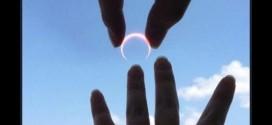 DE ESTE MODO – un japonés le pidió matrimonio a su novia