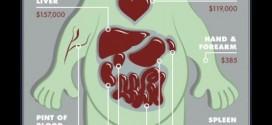 EN EL MERCADO NEGRO – Tu cuerpo costaría unos 600.000 €
