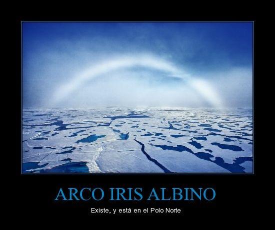 arco_iris_albino