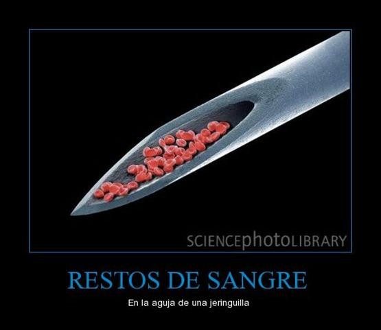 restos_de_sangre